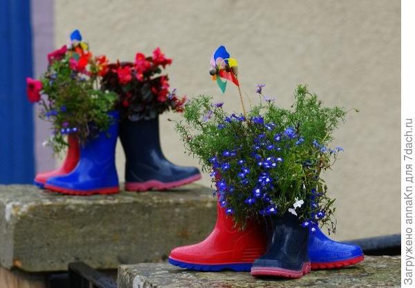 Цветы в сапогах!