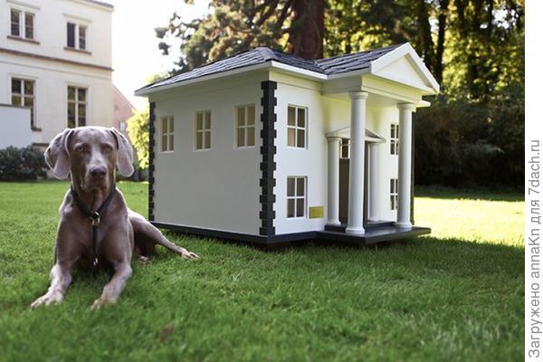 Загородный дом для барбоса!