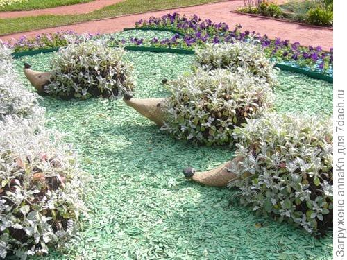 Поселите ежиков в саду!