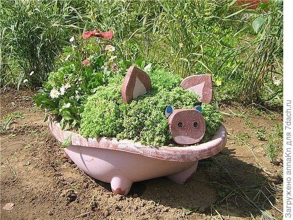 Клумба свинка