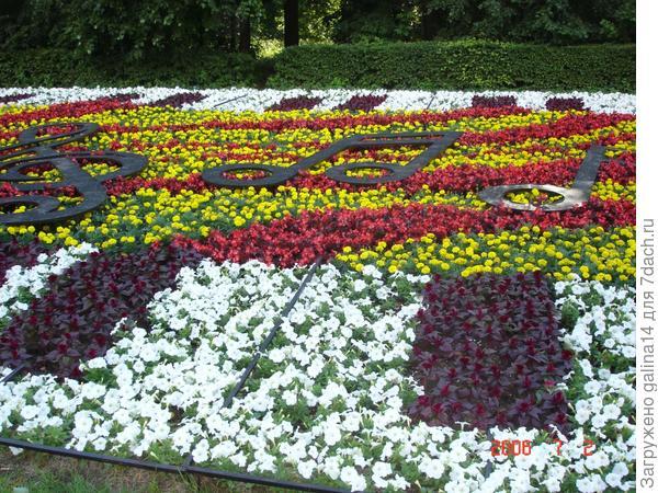 20 цветников — 20 идей для дачи