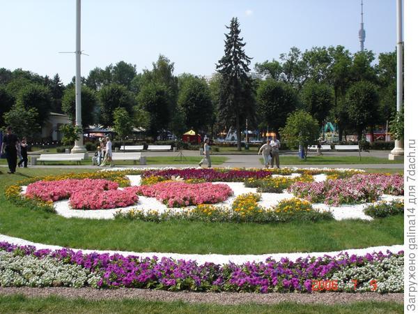 Цветник 10