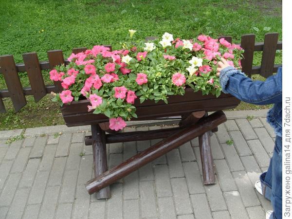Деревянная цветочница с петунией 1