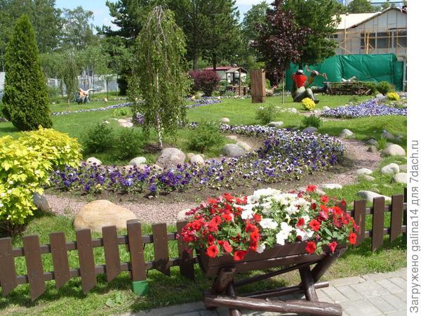 Деревянная цветочница с петунией 2