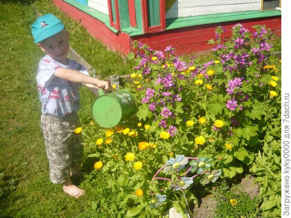 Растите цветочки,большие и маленькие!