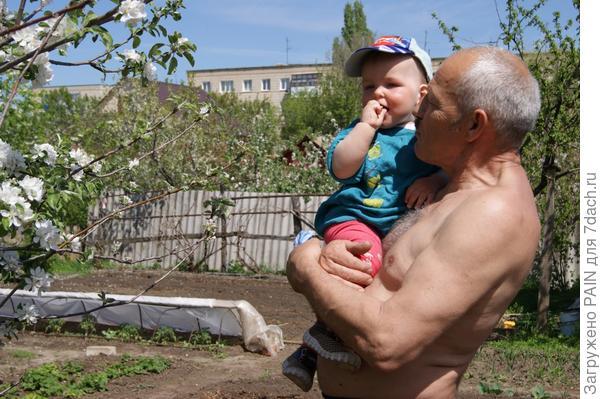 Дед?! пойдем на яблоньки посмотрим?