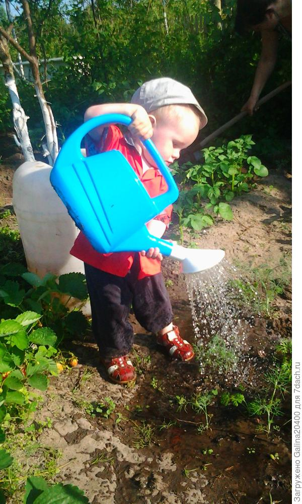Егорушка помогает поливать бабушке