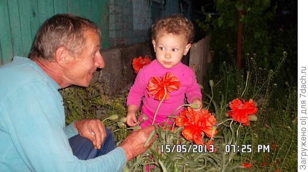 Ето мы с делулей, рвём цветочки для бабули!!!