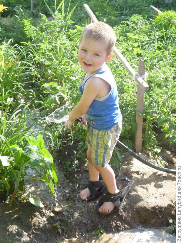 Поливаем огород, вода сама из шланга не течет