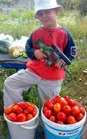 Дора, Дора, помидора, Мы в саду поймали вора,  Стали думать и гадать, Как нам вора наказать