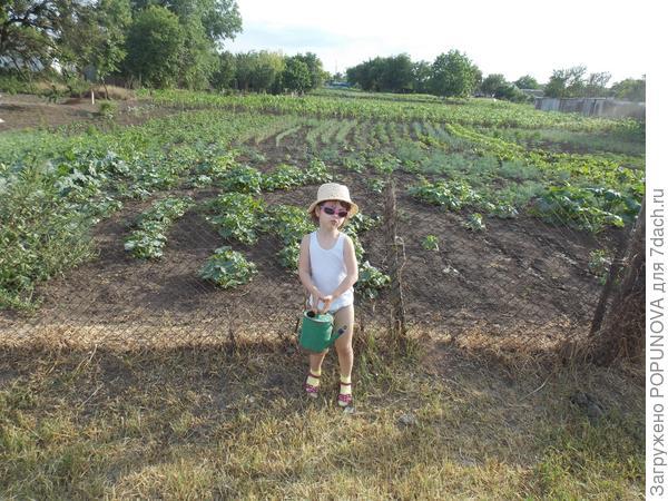 Хороший урожай благодаря мне! Вон какая лейка!!!!!