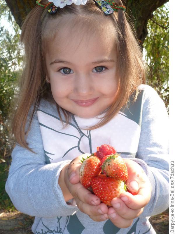 Катеринкины ягодки