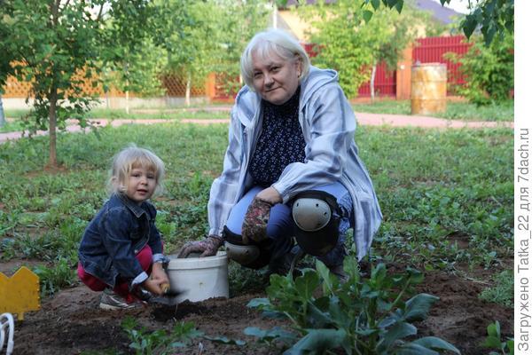 бабушкина помощница