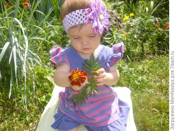 Наши цветочки и газон)