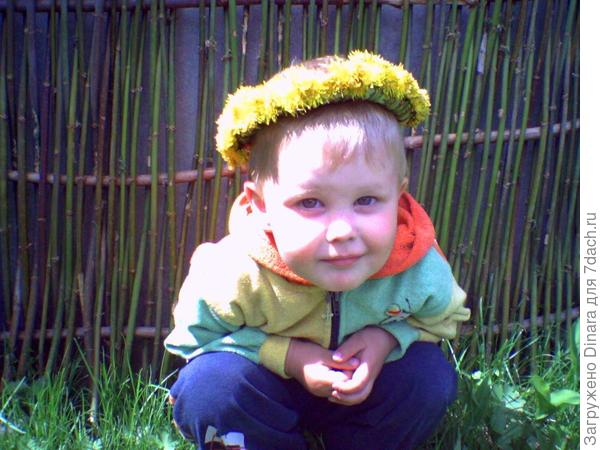 мой сыночек Максим