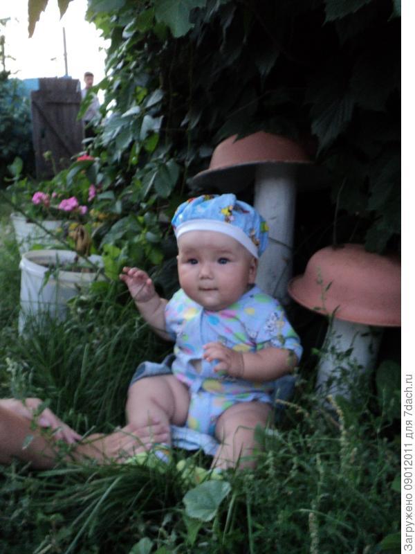 Сыночек - грибочек!!!