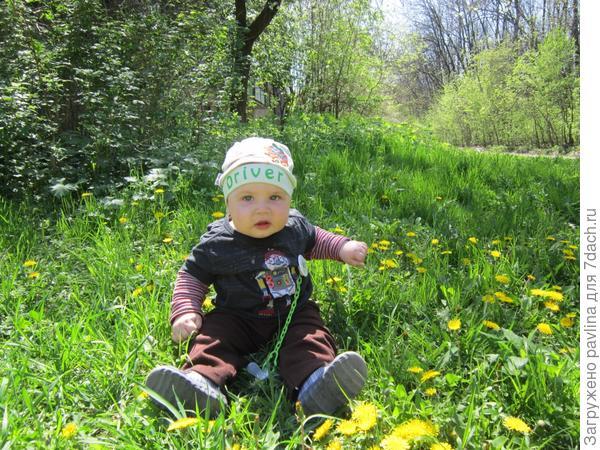 Тимурчик,8 месяцев