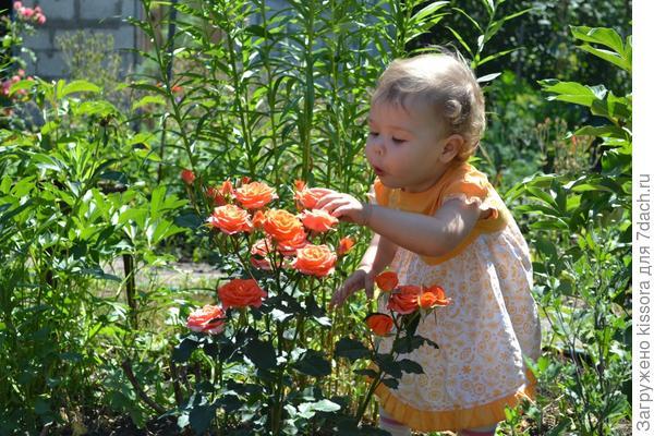Мой маленький цветочек
