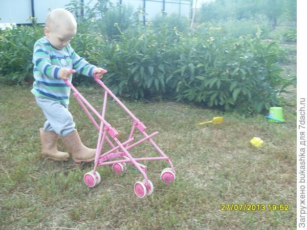 И не важно,что я обут в розовые сапоги и везу розовую коляску-главное,что я на даче,-а здесь можно всё!:)