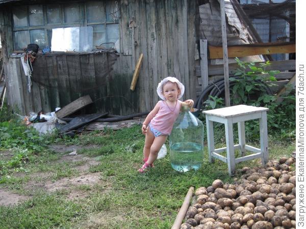 Наша первая картошка. В первый раз помогали копать картошку бабушке и деду. Устала)))