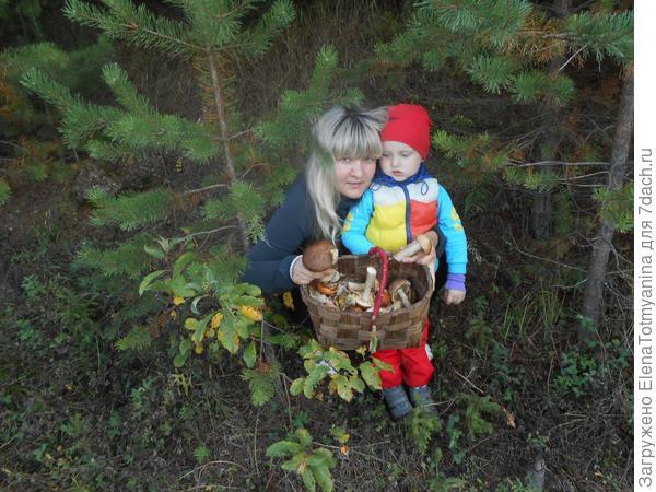 Раз, два, три, четыре, пять,  дедушка нас в лес вывел грибной УРОЖАЙ собирать!!!
