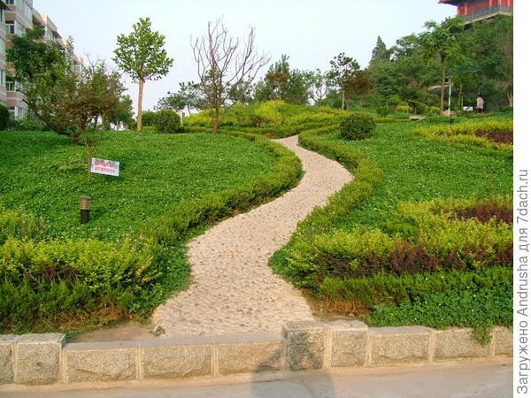 Китайский альтернативный газон
