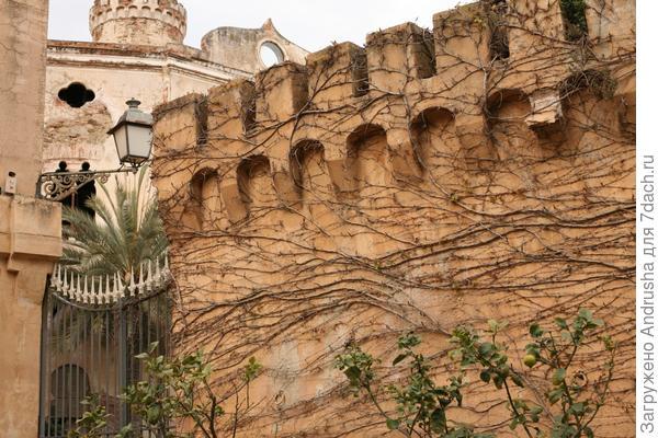 Испанский дворик с цитрусовыми