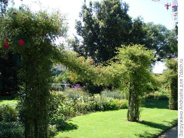 Гирлянды из роз в розарии парка Табор