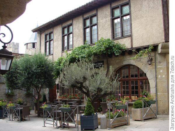 В центре маслина европейская, на стене дома – виноградная лоза