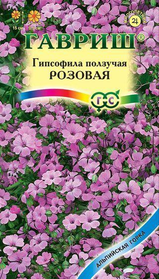 Семена ползучей розовой гипсофилы