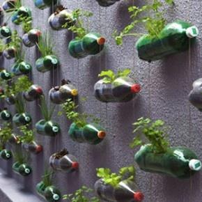 Огород из бутылок, разрезанных поперек