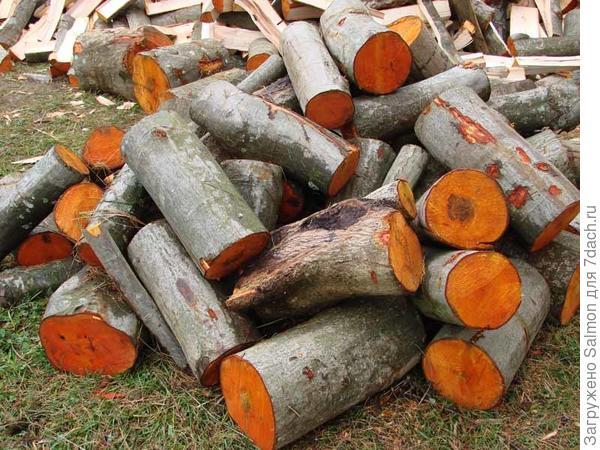 Дрова ольхи. Фото с сайта kupidrov.ru