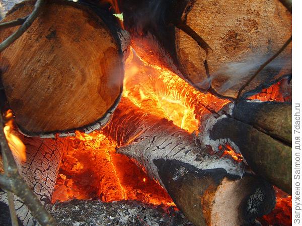 Костер из ольховых дров. Фото с сайта drovavoz.ru