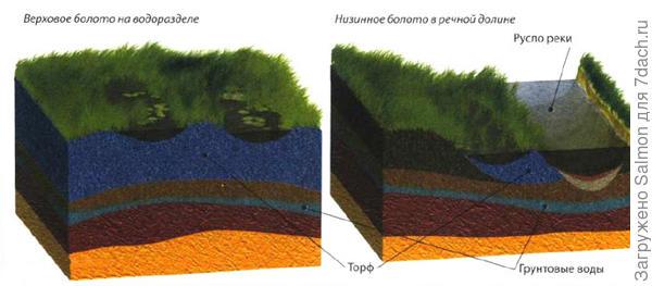Схема расположения торфа на верховом и низовом болоте. Фото с сайта infoglaz.ru