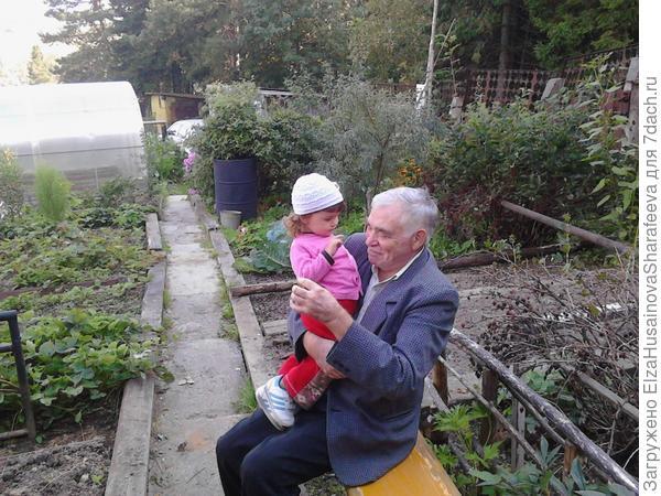А вот и сам дедушка с внучкой, на своей любимой даче.
