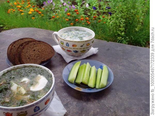 холодный суп-окрошка