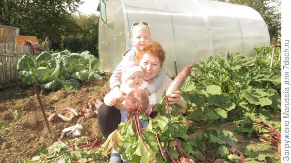 Как у бабушки в саду