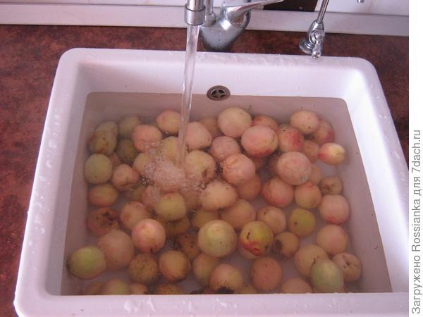 Персики купаются.