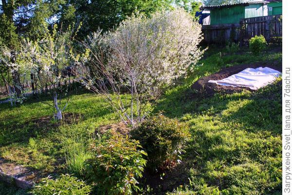 Малый сад
