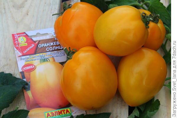 """Томат """"Оранжевое солнце"""" от """"Аэлиты"""""""