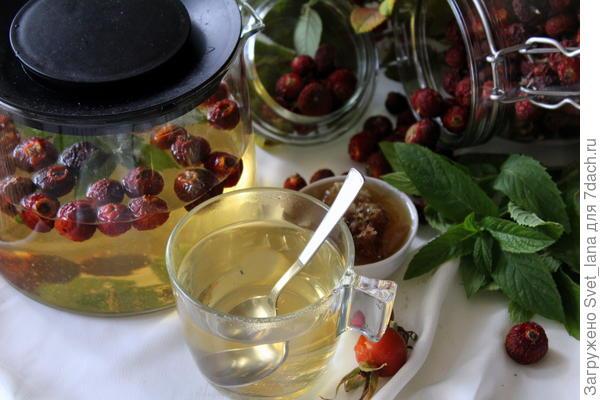 Чай из шиповника с мятой и медом