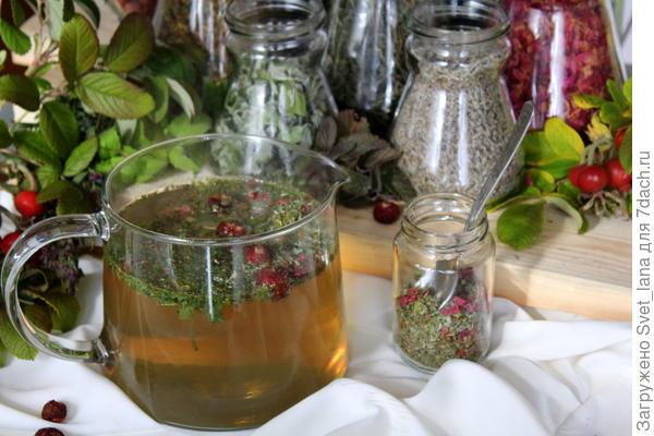Крымский чай; Бодрость; из трав. Польза. Рецепт с фотографиями