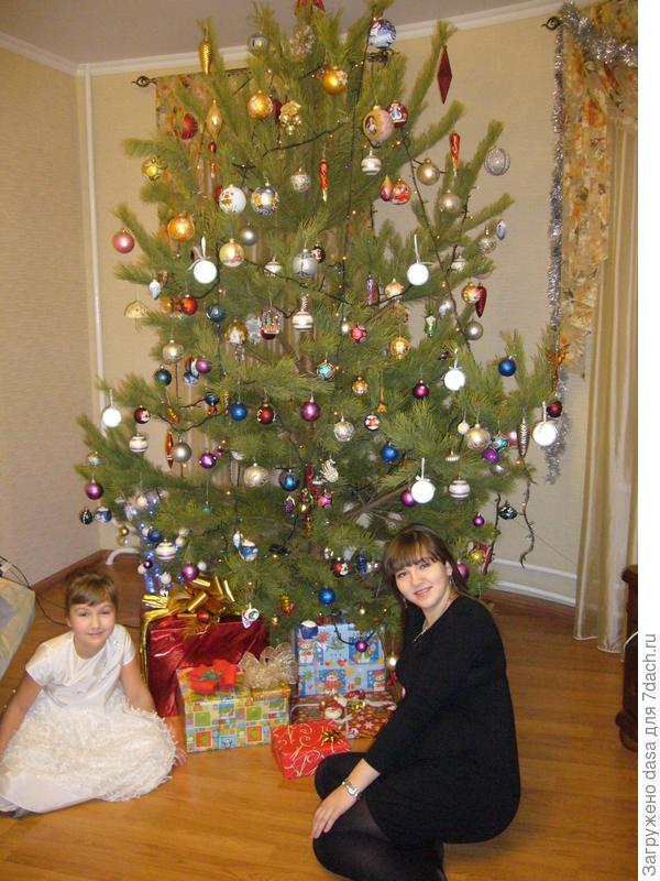 Новогодняя ёлка 2012-2013