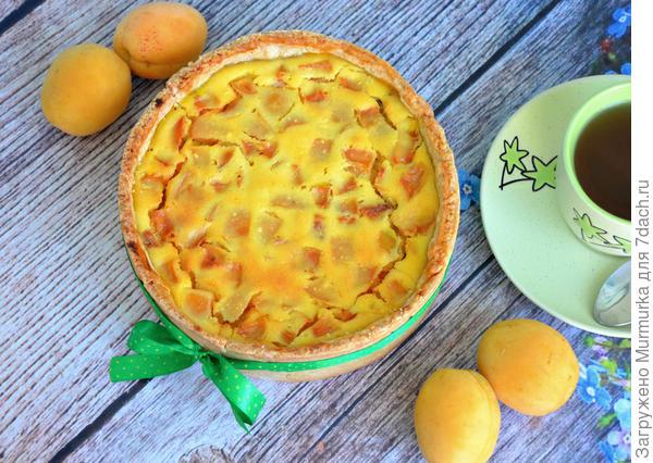 Песочно-творожный пирог с абрикосами — в нем идеально все
