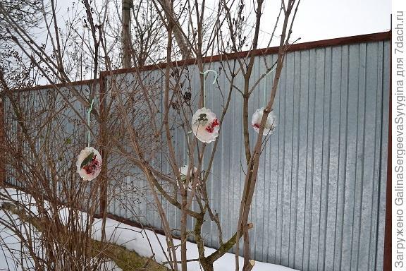 Ледяные мандалы в саду