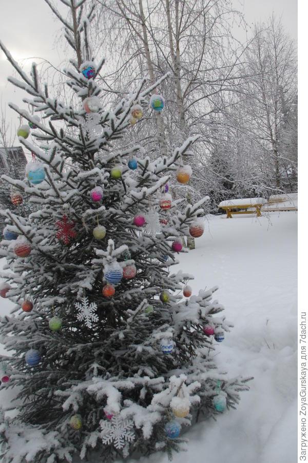 Новогодняя елка на даче.