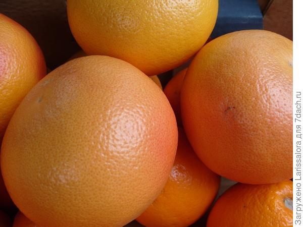 Грейпфруты для похудения
