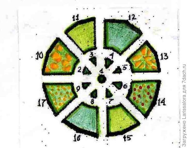 Декоративный огород с 3-я капустами