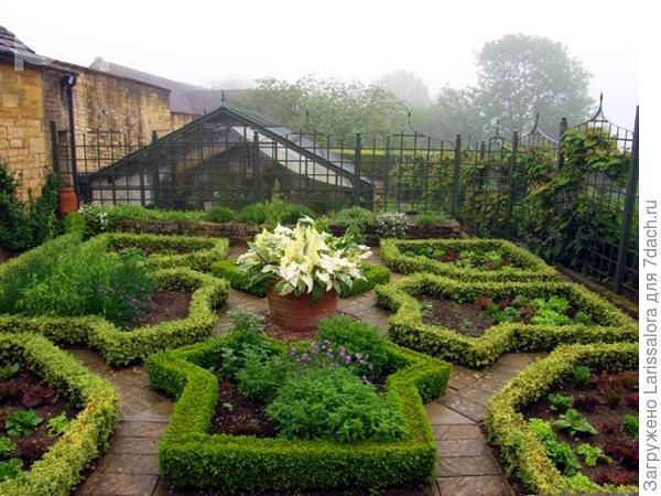 Декоративный огород в обрамлении самшита