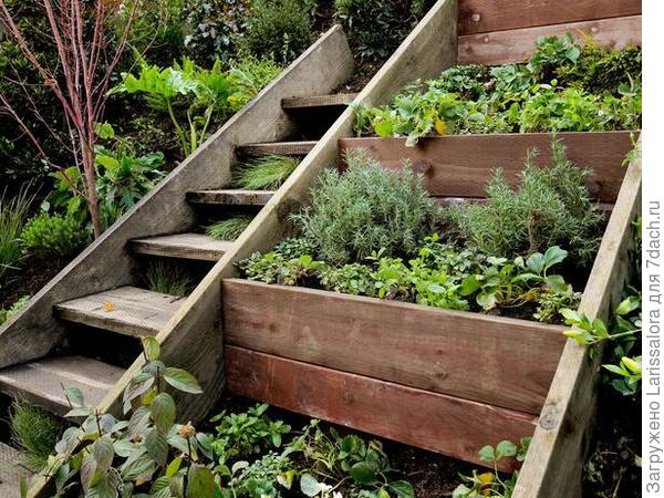 Декоративный огород на террасах с использованием дерева